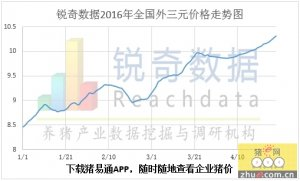 2016年4月28日猪评:整体继续上涨,闽粤唱主角