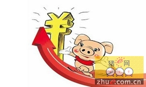 猪肉价格暴涨拉动牛肉消费浙江人将吃到澳洲活牛肉