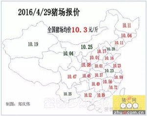 【行情】猪价继续上涨,东北、华中涨幅缩小