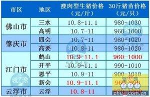牧之源--广东4月29日猪讯