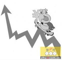 陕西省生猪价格继续上涨