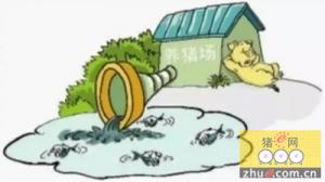 网友投诉养猪场废水排入河道 官方要求停止排污行为