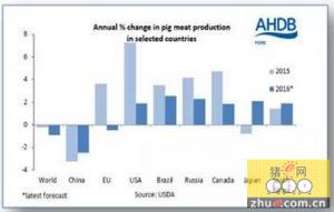 """今年全球猪肉产量料下降 中国减产预期成""""众矢之的"""""""