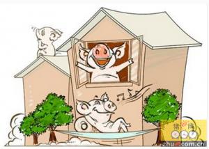 """河北沧州沧县尹玉强的""""立体""""养猪法"""