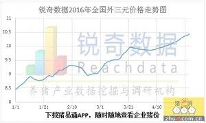 2016月5月3日猪评:猪价继续创高峰 东北全面破10