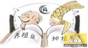 中国养猪业相关政策分析