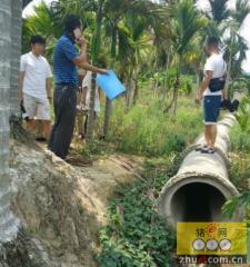 海南万宁后安村民举报一养猪场上千平方米粪水池恶臭长期违规排污