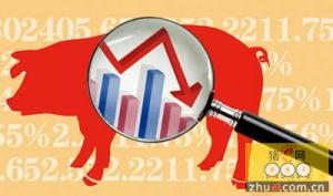储备肉投放导致养殖户心理压力增加 猪价
