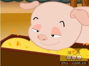 初产母猪无乳综合征的分析及防控