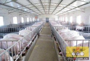 猪场设施种类多,后勤培训不可缺