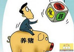 北方生猪价格稳中上涨 南方猪价下跌走势