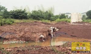 湖南兽药厂填埋过期药,居民井水都绿了