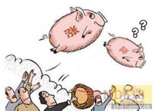农业部:生猪价格缺乏继续上涨动力 下跌
