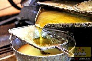 菜籽将主要流向浓香菜籽油消费区