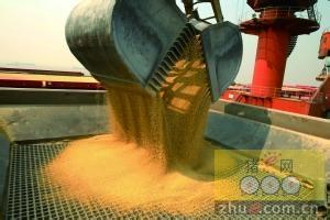 豆粕阶段性回调 中长期看涨
