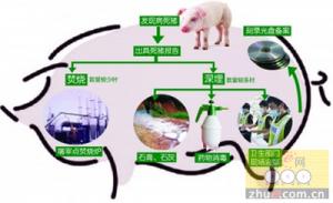贵州:2020年各市州分别建设1座病死畜禽无害化集中处理场
