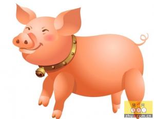 养猪注意几个关键的三天