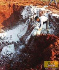 宁乡一公司违法掩埋两吨过期兽药 环保部门查处