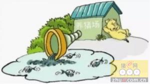 襄阳市襄州区朱集镇人大加大监管力度,治理生猪养殖污染
