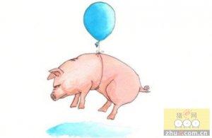 饲料价格都涨了 生猪怎么就跟不上节奏?