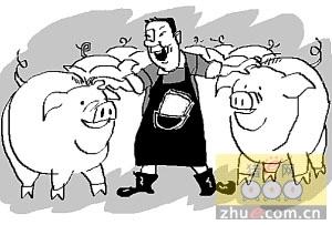 能繁母猪存栏新周期将开启 猪价景气有望