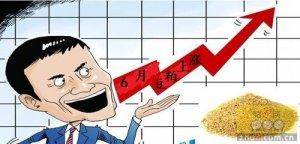 6月份国内豆粕依旧涨势如虹