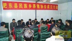 湖南攸县养猪协会努力打造生猪出口品牌