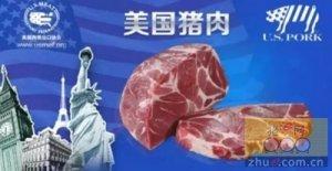 美国前4个月猪肉出口到中国激增78%