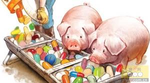 抗生素生长促进剂(AGPS)的有效替代品(