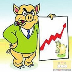 山东淄博博山区生猪价格呈震荡上涨态势