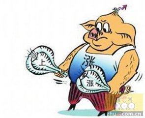 中国推动豆粕价格飙升 美媒:主要因为猪肉涨价了