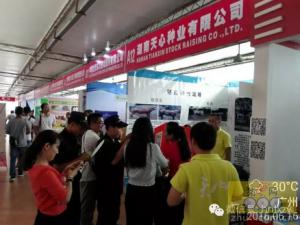 天心种业参展第四十一届广东养猪产业博览