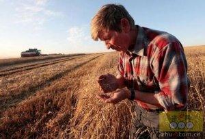 2016年俄将继续保持农产品出口大国地位