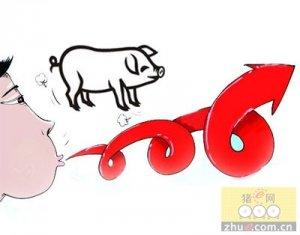 6月无锡生猪价格略有回升 在10元高位运行