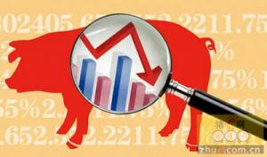 杭州本周猪肉批发价下跌 零售价略涨