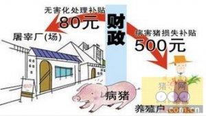 病死猪无害化处理设备抓住多方利益带动上