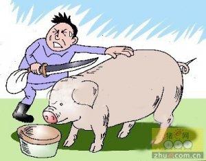 (详解)小型生猪屠宰场设立条件有哪些?