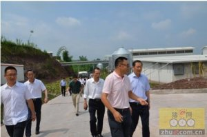 重庆市副市长刘强一行到天兆猪业调研