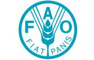 FAO:6月份全球食品价格指数上涨4.2%