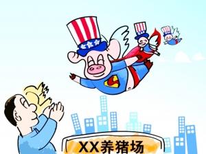 国内种猪不应该全盘西化