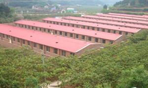 松山区温氏农牧有限公司安庆猪场建设进展