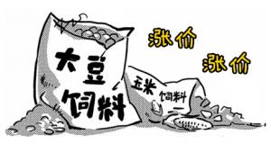 四川上半年全省饲料生产走势强劲