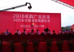 鑫广安广西30万头生猪养殖项目启动,未来