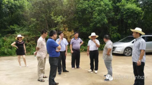 攸县各级领导到湖南省畜牧育种产业园新市项目部现场调研