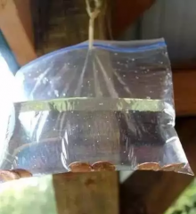 最全的夏季猪场有效的驱蚊、蝇简单方法整理