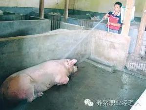"""想让猪场疫病少,就要做到――控""""三流"""""""