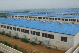 湖南宜章:黄沙镇高标准生猪养殖场即将竣工