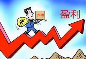 短期内终端消费难以恢复 猪价大幅上涨的可能性不大