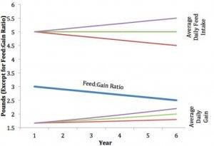 采食量、增重和饲料转化率都是什么意思?