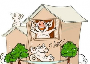 商南:发展产业脱贫 建设生态种猪繁育基